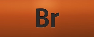 Kurs Adobe Bridge